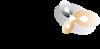 Logo SEEN