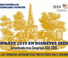 Update 2019 en Diabetes Seen